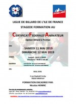 FORMATION AU CERTIFICAT FEDERAL D'ANIMATEUR DE CLUB OPTION BILLARDS A POCHES EN ILE DE FRANCE